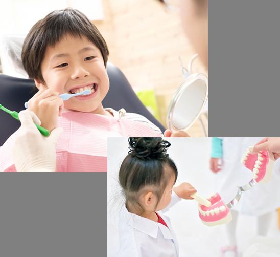 歯の予防クラブ
