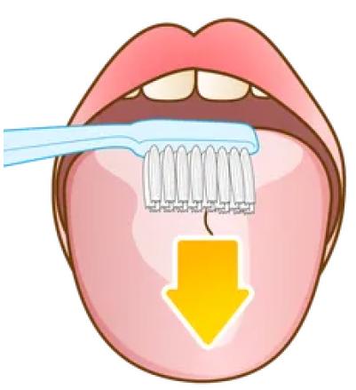 舌のケア方法