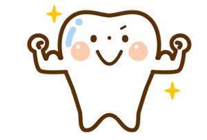 歯を強くする